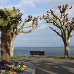 Озеро Бодензее